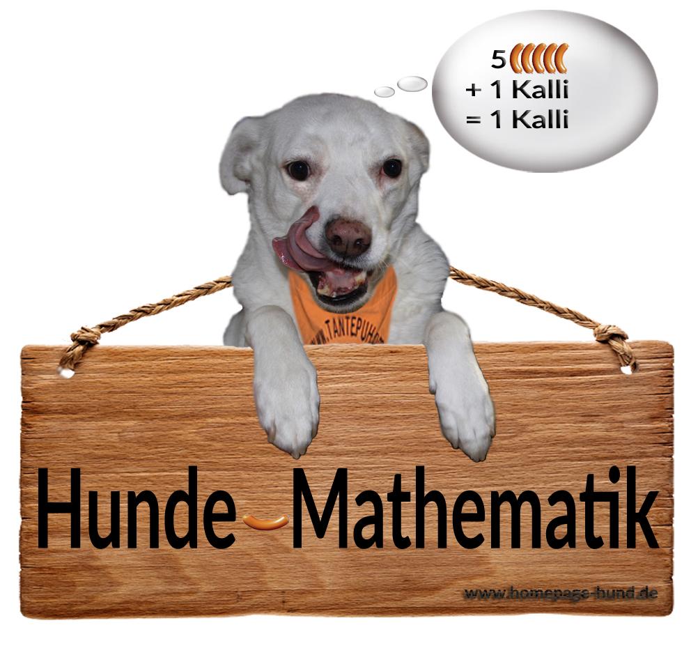 Wurstdieb Kalli oder einfach Hunde-Mathematik